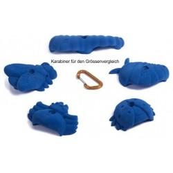 FIXE, Klettergriffe Bugs, blau