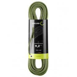 Edelrid, Seil Hummingbird Pro Dry 9.2mm, 100m, night-citrus